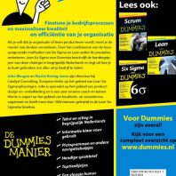 Lean Six Sigma voor Dummies